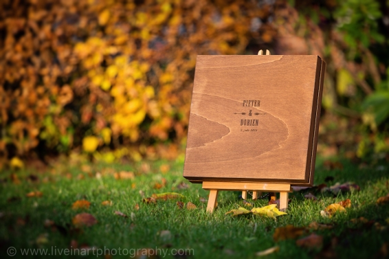 bruidsboek_liveinart_c033084_small