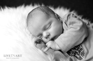 Duco_IMG_4214_bw_small copy